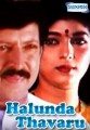 Halunda Thavaru Movie Poster