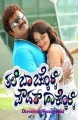Thale Bachkolli Powder Hakkolli Movie Poster
