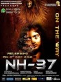 NH 37 Movie Poster